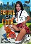 schoolofcock