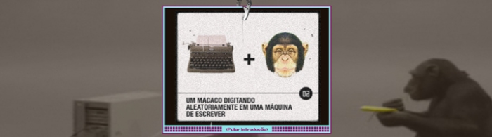 macaco01